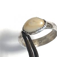 Elk Ivory Ring in Narrow Sterling Band East West #3